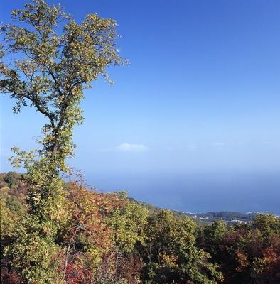 Θέα από το Μαυροβούνι