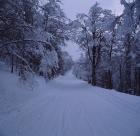 Χειμερινός36